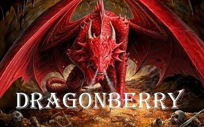 eliquido dragonberry