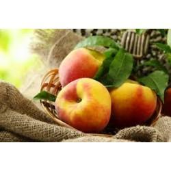 Durazno Peach
